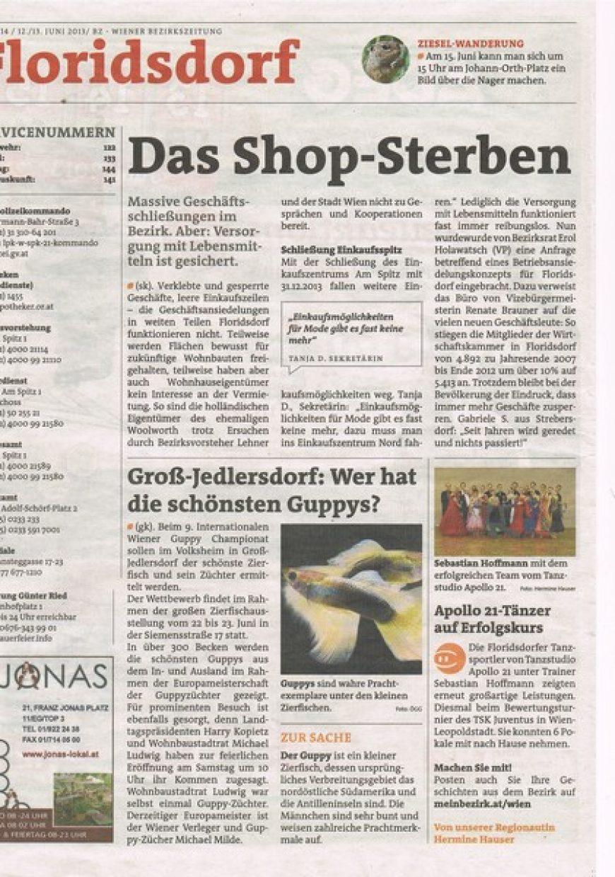 Printausgabe der BZ Floridsdorf – Juni 2013